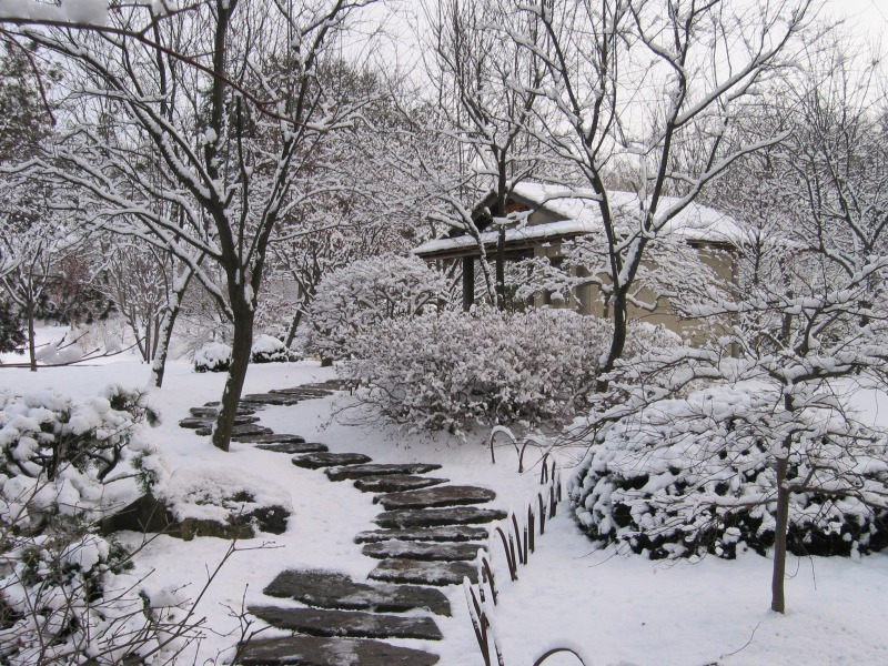 Missouri botanical garden winter - Gardening mistakes maintaining garden winter ...